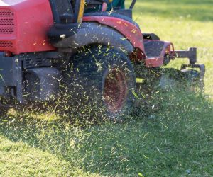 Fined for using a mobile phone while in charge of a motorised lawn mower