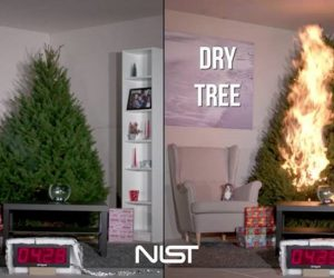 Christmas Tree Fires – check your lights and have a water reservoir for your tree if it is real